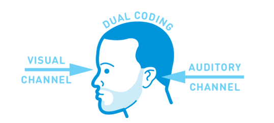 Dual Coding & Working Memory